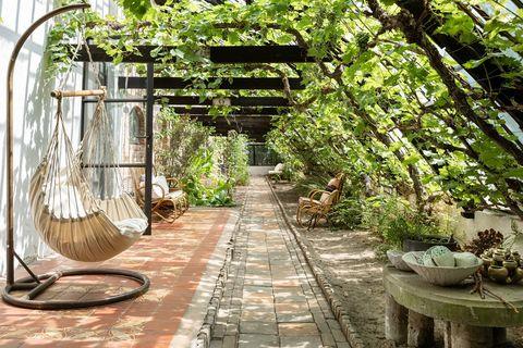 Overnachten in een 100 jaar oude druivenkas