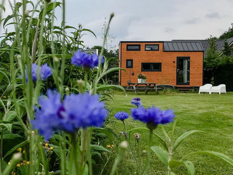 Tiny House op de Veluwe