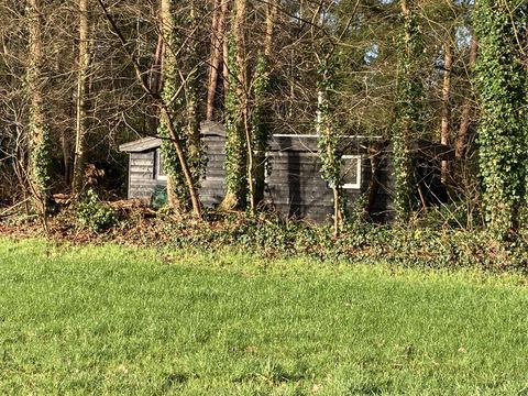 Natuurhuisje in eigen stuk bos met open haard