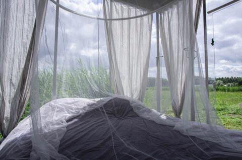 Unieke ervaring! Slapen midden in de natuur