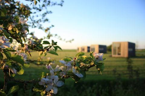 Panoramische vergezichten in Friesland