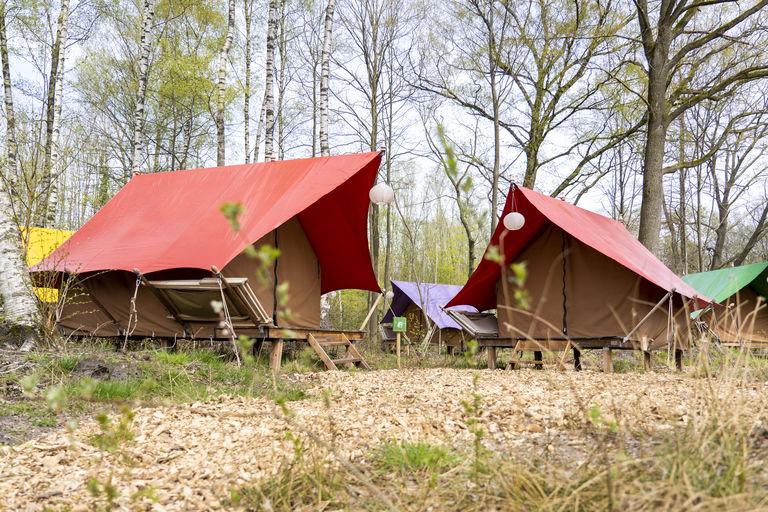 Luxe tenten op unieke glamping in Twente