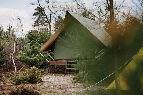 Glamping op een avontuurlijke locatie in NL